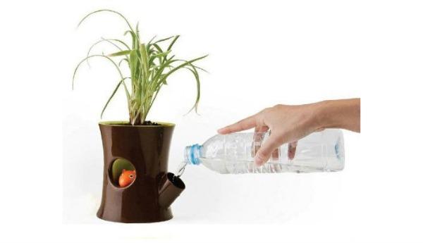 Капельный полив своими руками для комнатных цветов 463